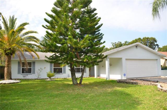 105 N Bay Hills Boulevard, Safety Harbor, FL 34695 (MLS #U8046779) :: Medway Realty