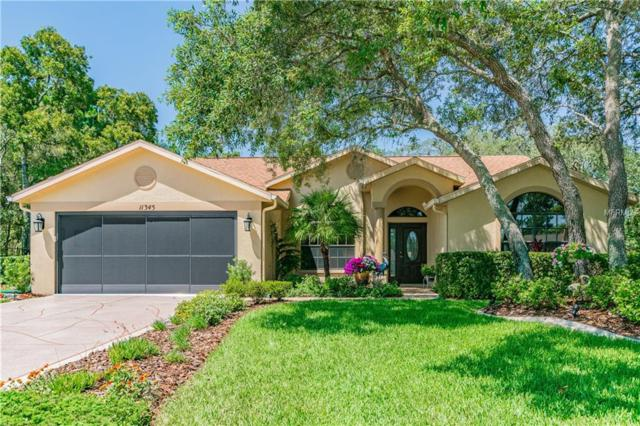 11345 Deercroft Court, Spring Hill, FL 34609 (MLS #U8046871) :: Mark and Joni Coulter | Better Homes and Gardens