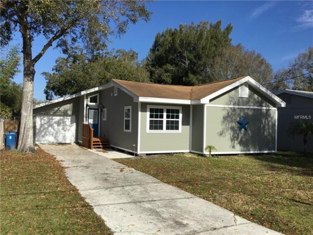 208 Lee Street, Oldsmar, FL 34677 (MLS #U8046879) :: Team 54