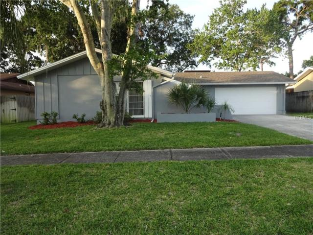 204 Hillcrest Drive, Safety Harbor, FL 34695 (MLS #U8046905) :: Mark and Joni Coulter | Better Homes and Gardens