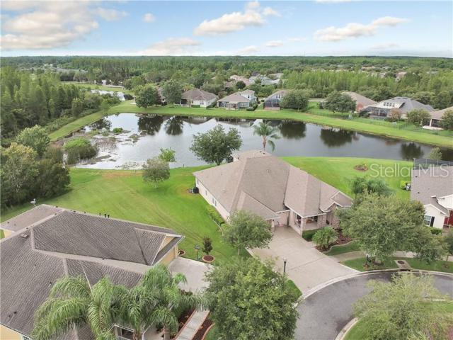 8539 Winsome Way, Land O Lakes, FL 34637 (MLS #U8047182) :: The Duncan Duo Team