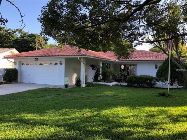 1632 Heather Place, Palm Harbor, FL 34684 (MLS #U8047478) :: Cartwright Realty