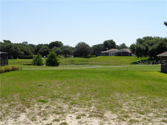 13600 Niti Drive, Hudson, FL 34669 (MLS #U8047594) :: Team Pepka