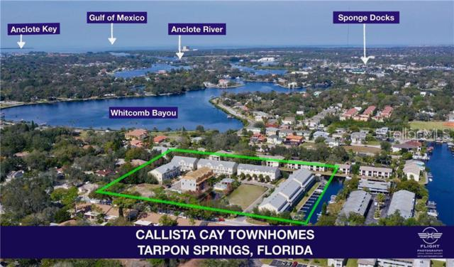807 Callista Cay Loop, Tarpon Springs, FL 34689 (MLS #U8047704) :: Delgado Home Team at Keller Williams