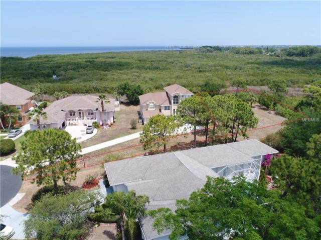 Lot 8 Sheppards Crook Court, Holiday, FL 34691 (MLS #U8047775) :: GO Realty