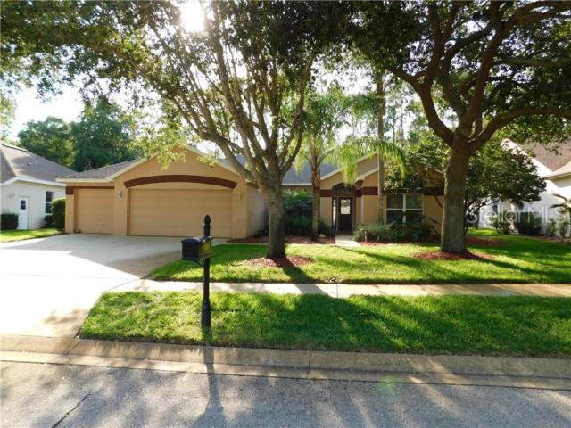 3677 Siena Lane, Palm Harbor, FL 34685 (MLS #U8048001) :: Delgado Home Team at Keller Williams