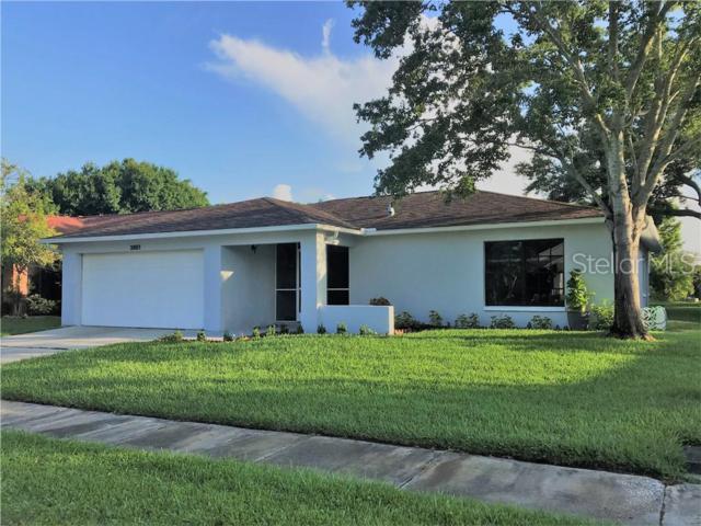 3951 105TH Avenue N, Clearwater, FL 33762 (MLS #U8048205) :: Cartwright Realty
