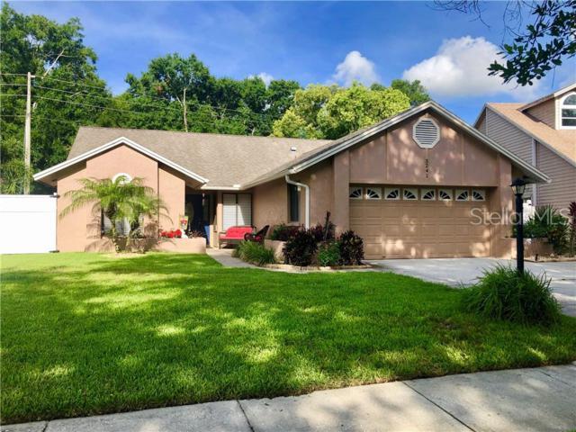 3241 Montrose Circle, Palm Harbor, FL 34684 (MLS #U8048236) :: Gate Arty & the Group - Keller Williams Realty