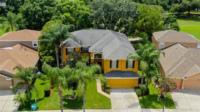 16136 Muirfield Drive, Odessa, FL 33556 (MLS #U8048481) :: Cartwright Realty