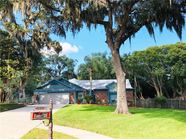 573 Channel Court, Palm Harbor, FL 34684 (MLS #U8048533) :: Griffin Group