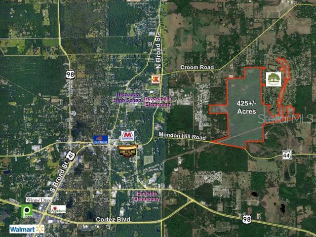 Address Not Published, Brooksville, FL 34601 (MLS #U8048591) :: The Duncan Duo Team