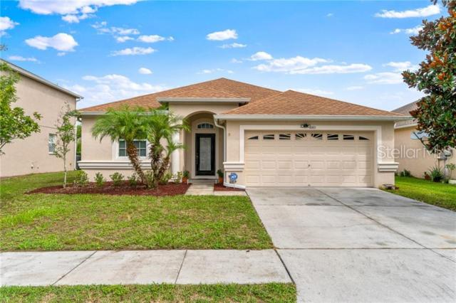 9145 Lost Mill Drive, Land O Lakes, FL 34638 (MLS #U8048611) :: Dalton Wade Real Estate Group
