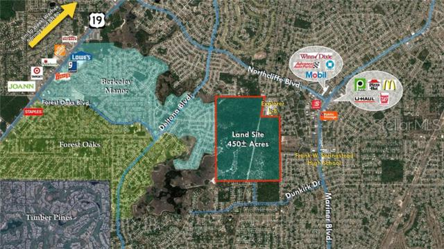 Address Not Published, Spring Hill, FL 34608 (MLS #U8048624) :: The Duncan Duo Team