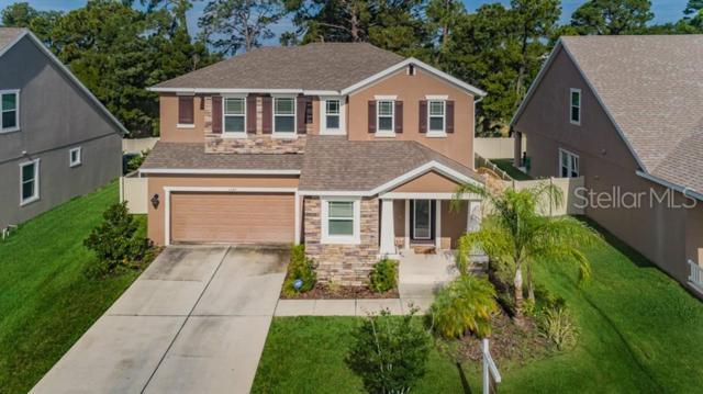 1247 Windy Bay Shoal, Tarpon Springs, FL 34689 (MLS #U8048629) :: Rabell Realty Group