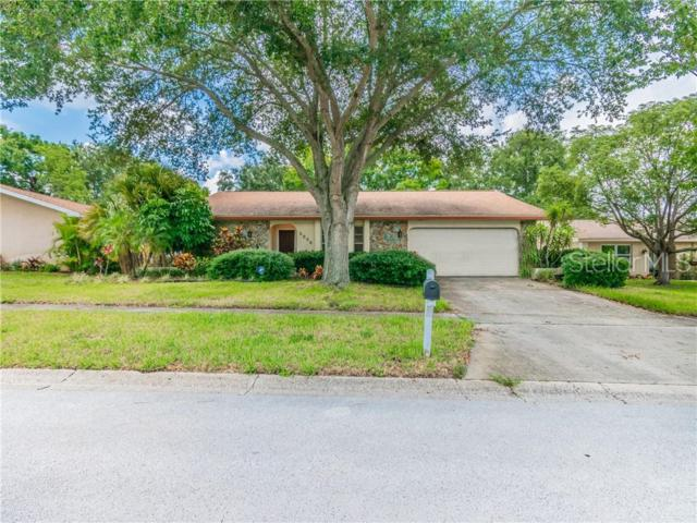 2880 Endicott Court, Clearwater, FL 33761 (MLS #U8048735) :: Bridge Realty Group