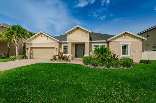 3661 Arbor Chase Drive, Palm Harbor, FL 34683 (MLS #U8048742) :: Paolini Properties Group