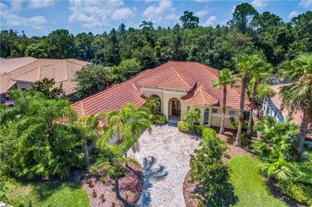 11940 Royce Waterford Circle, Tampa, FL 33626 (MLS #U8048743) :: Andrew Cherry & Company