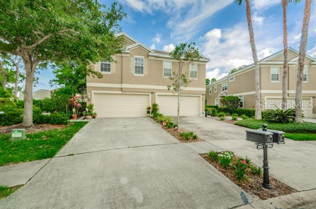 2557 Newbern Drive, Clearwater, FL 33761 (MLS #U8048753) :: Bridge Realty Group