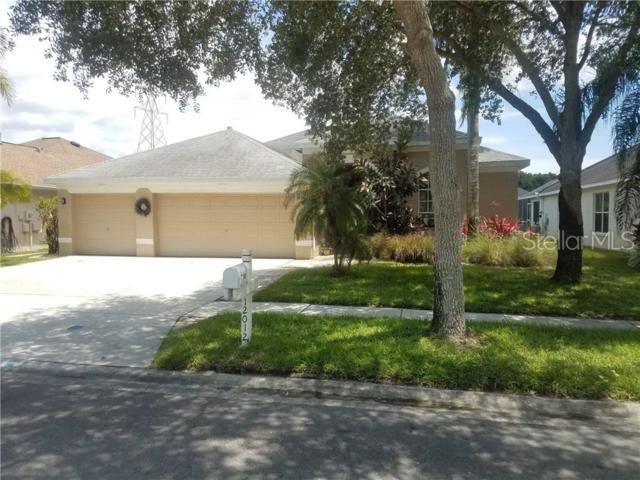 12012 Northumberland Drive, Tampa, FL 33626 (MLS #U8048804) :: Cartwright Realty