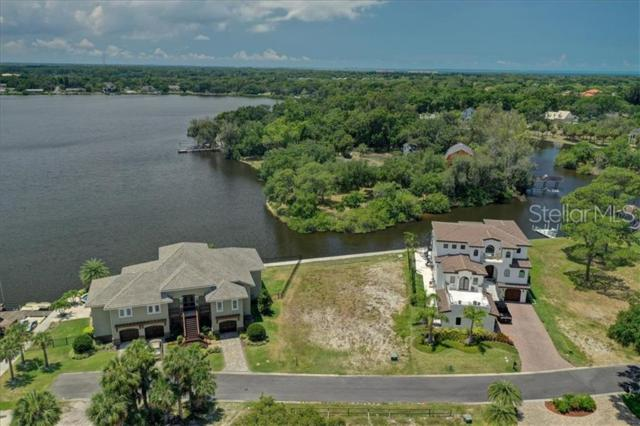 80 Inness Drive, Tarpon Springs, FL 34689 (MLS #U8048841) :: The Duncan Duo Team
