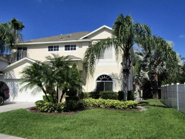 4851 Trinidad Drive, Land O Lakes, FL 34639 (MLS #U8048862) :: Baird Realty Group