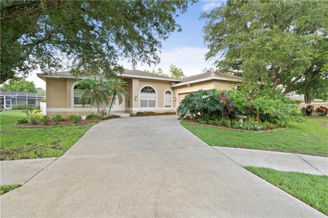 3025 Key Harbor Drive, Safety Harbor, FL 34695 (MLS #U8048902) :: Bridge Realty Group