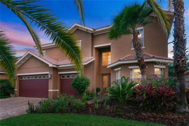 18034 Cozumel Isle Drive, Tampa, FL 33647 (MLS #U8048950) :: Team Bohannon Keller Williams, Tampa Properties