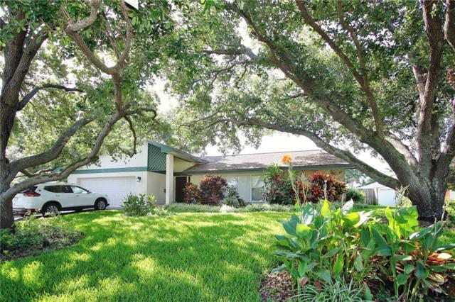 498 Riviera Bay Drive NE, St Petersburg, FL 33702 (MLS #U8048993) :: Griffin Group