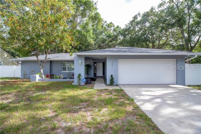 301 41ST Avenue N, St Petersburg, FL 33703 (MLS #U8049049) :: Advanta Realty