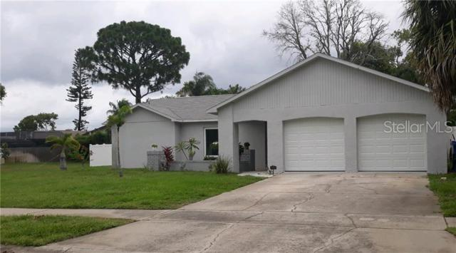 2441 Pinetta Court, Holiday, FL 34691 (MLS #U8049088) :: Paolini Properties Group