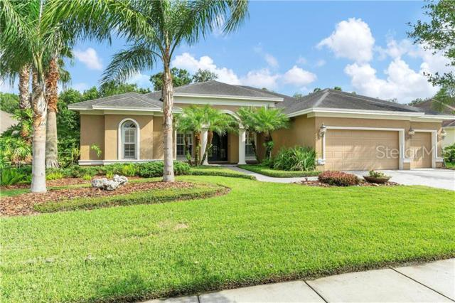 26908 Winged Elm Drive, Wesley Chapel, FL 33544 (MLS #U8049100) :: The Duncan Duo Team