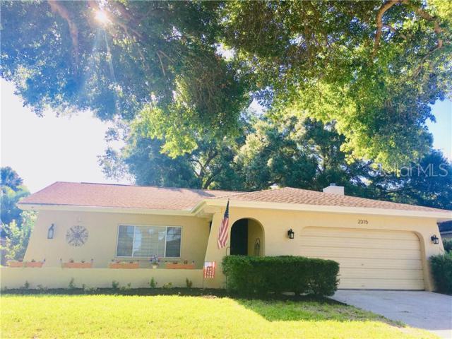 2315 E Orangehill Avenue, Palm Harbor, FL 34683 (MLS #U8049143) :: Paolini Properties Group