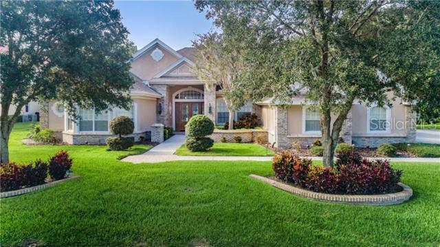 2873 Roehampton Close, Tarpon Springs, FL 34688 (MLS #U8049261) :: Rabell Realty Group