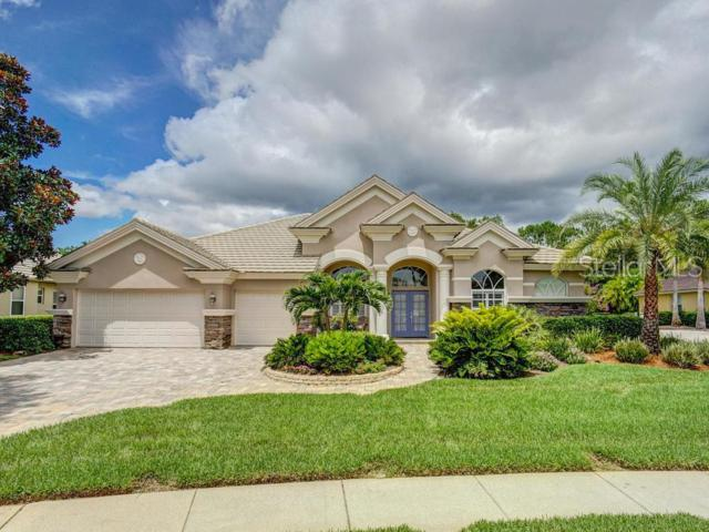 5167 Jasmine Way, Palm Harbor, FL 34685 (MLS #U8049276) :: Baird Realty Group