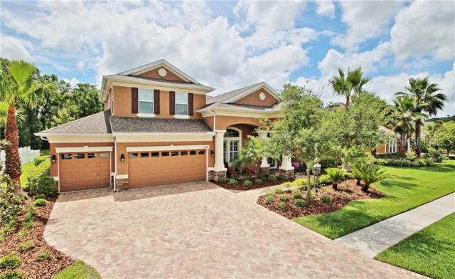 3228 Watermark Drive, Wesley Chapel, FL 33544 (MLS #U8049400) :: Team Bohannon Keller Williams, Tampa Properties
