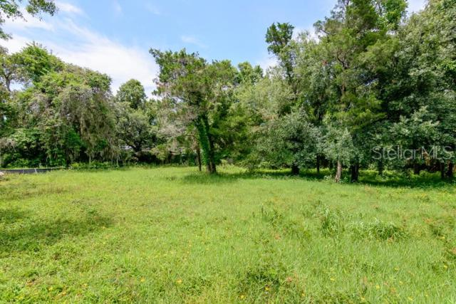 282 Orange Street, Palm Harbor, FL 34683 (MLS #U8049407) :: Dalton Wade Real Estate Group