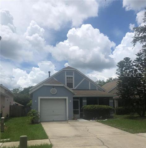 14909 Deer Meadow Drive, Lutz, FL 33559 (MLS #U8049465) :: Griffin Group