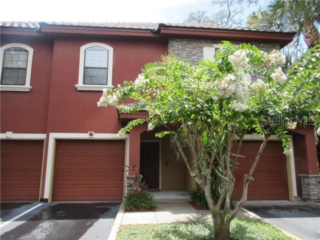 2138 Chianti Place #7, Palm Harbor, FL 34683 (MLS #U8049472) :: Delgado Home Team at Keller Williams