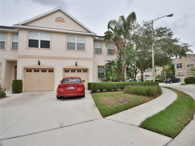547 Black Lion Drive NE, St Petersburg, FL 33716 (MLS #U8049475) :: Dalton Wade Real Estate Group
