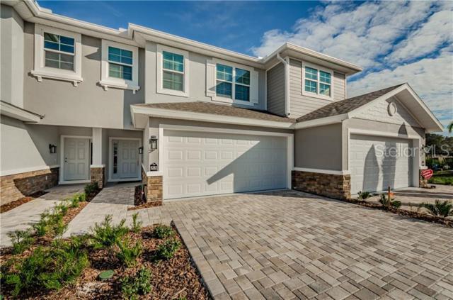 5464 Riverwalk Preserve Drive, New Port Richey, FL 34653 (MLS #U8049482) :: Cartwright Realty
