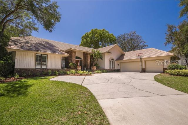 3686 Woodridge Place, Palm Harbor, FL 34684 (MLS #U8049485) :: McConnell and Associates