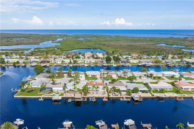 12616 4TH Isle, Hudson, FL 34667 (MLS #U8049500) :: Cartwright Realty