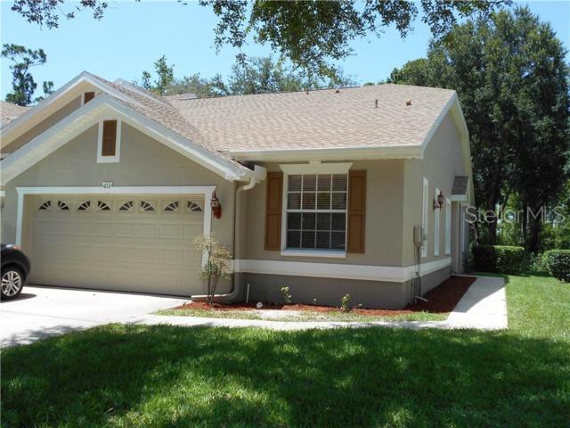 612 Spring Lake Circle, Tarpon Springs, FL 34688 (MLS #U8049684) :: Team 54