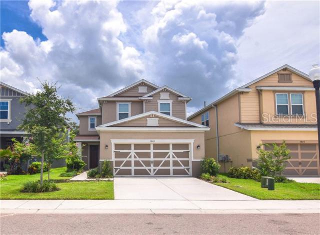 5845 Ambersweet Court, Seminole, FL 33772 (MLS #U8049705) :: Team 54