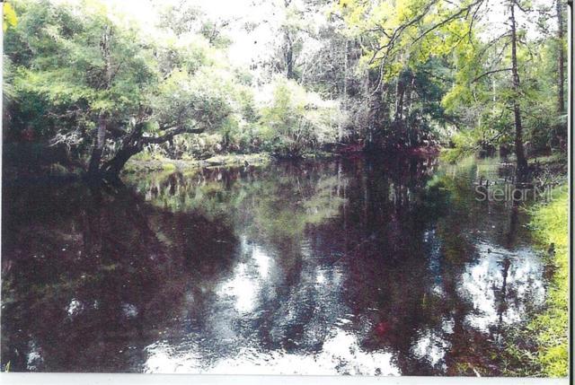 1702 River Road NE, Steinhatchee, FL 32359 (MLS #U8049723) :: The Duncan Duo Team
