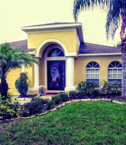 2309 Lawrence Hall Street, Ruskin, FL 33570 (MLS #U8049727) :: Lock & Key Realty