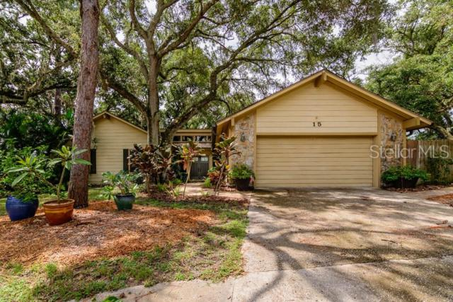 15 Clearview Drive, Safety Harbor, FL 34695 (MLS #U8049828) :: Team 54