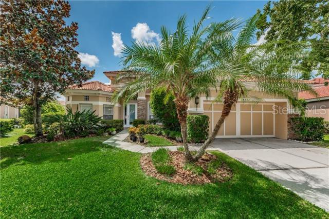 14732 San Marsala Court, Tampa, FL 33626 (MLS #U8049831) :: Andrew Cherry & Company
