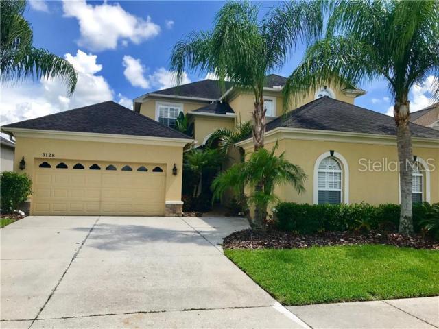 3128 Stonegate Falls Drive, Land O Lakes, FL 34638 (MLS #U8049870) :: Cartwright Realty
