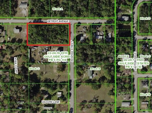 15199 Redfish Street, Hudson, FL 34667 (MLS #U8049888) :: Cartwright Realty